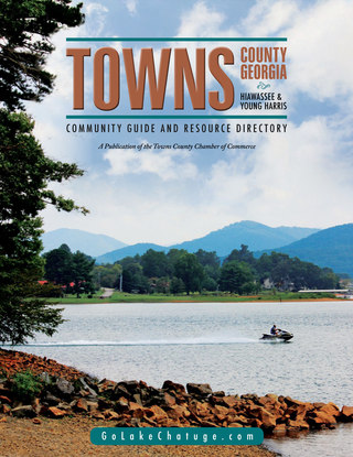 towns2